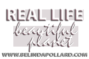 www.BelindaPollard.com