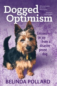 Dogged Optimism: Lessons in Joy from a Disaster-Prone Dog is about Killarney, the first dog that was all my own. She rocketed from one calamity to another, but kept me laughing and feeling loved all the way.